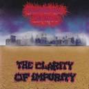 SUMMERTIME DAISIES - The Clarity of Impurity / Demos CD