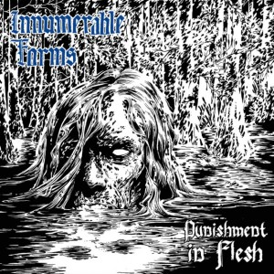 INNUMERABLE FORMS - Punishment In Flesh CD