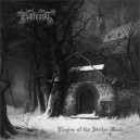 EVILFEAST - Elegies of the Stellar Wind 2LP