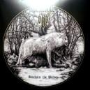 DESTROYER 666 - Unchain The Wolves LP